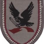 Division_Luftbewegliche_Operationen